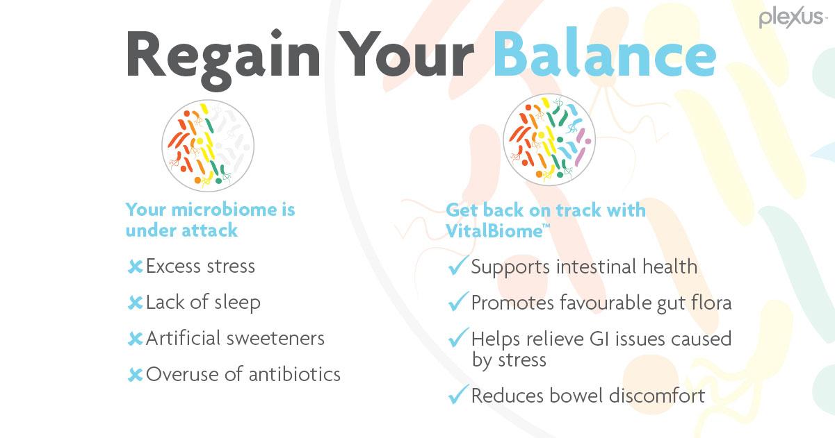 regain your balance canada with plexus vital biome